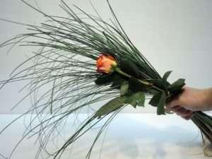 6. Kürzen Sie das Bärgras nach eigenem Geschmack. Das Bärgras sollte etwa 1/3 bis 2/3 länger sein als die Rosen
