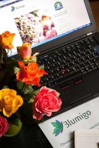 Aufbau eines Blumen Online-Shops_Blumigo_bunte Rosen