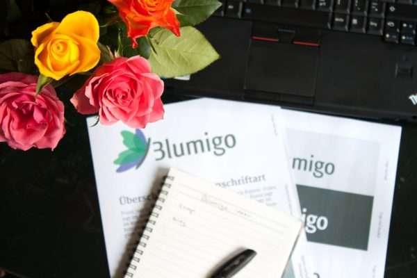 Aufbau eines Blumen Online-Shops_bunte Rosen_Blumigo
