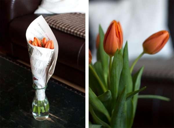 Tulpen mit hängenden Köpfen_Tulpen Pflege_schlappende Tulpen