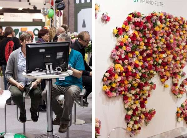 Weltkarte aus bunten Rosen gesteckt