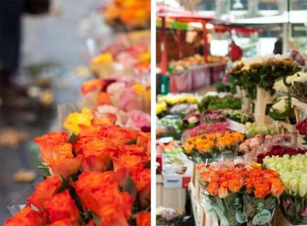 Orange Rosen auf dem Wochenmarkt in Telgte