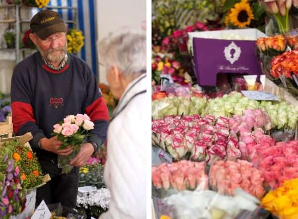 Rosenverkauf auf dem Wochenmarkt_ Rosen verkaufen