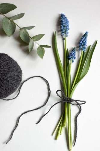 Traubenhyazinthen Muscari Eukalyptus Wolle