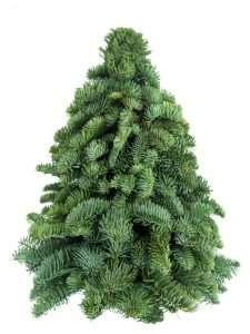 Gesteckter Tannenbaum 40 cm