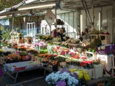 Wochenmarkt Warendorf