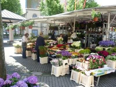 Wochenmarkt Sassenberg