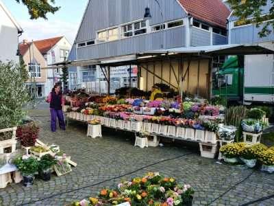 Wochenmarkt Wiedenbrück Horstmann 1